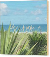 Peeking Sea Wood Print