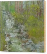 Peekskill Hollow Creek Wood Print