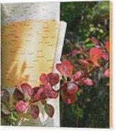 Peeling Bark Of White Birch Tree Wood Print