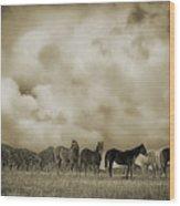Peeples Valley Horses In Sepia Wood Print