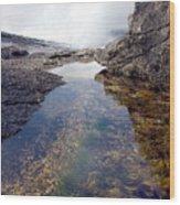 Peggy's Cove Tide Pool Wood Print