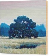 Peggys Oak Wood Print