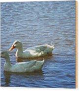 Pekin Ducks 20120515_15 Wood Print