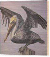Pelican 2 Wings Spread Wood Print