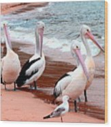 Pelican 5.0 Pearl Beach Wood Print