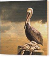 Pelican After A Storm Wood Print
