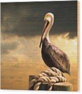Pelican After A Storm Wood Print