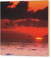 Pelican At Sunrise Wood Print