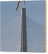 Pelican Diving Arthur Ravenel Jr Bridge Over The Cooper River In Charleston South Carolina Wood Print