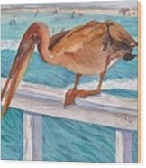 Pelican Dude Wood Print