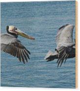 Pelican Duo Wood Print