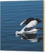 Pelican Fishing 666 Wood Print