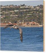 Pelican Flying Above The Pacific Ocean Wood Print