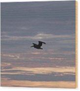Pelican In A Painted Sky Wood Print
