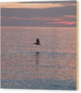 Pelican In Flight At Dawn Wood Print