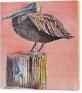 Pelican In Late Afternoon Wood Print