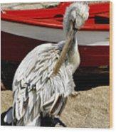 Pelican In Mykonos II Wood Print