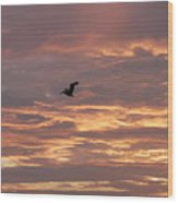 Pelican In Painted Sky Wood Print