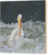 Pelican In Rough Water Wood Print
