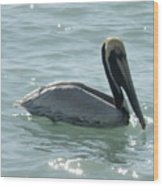 Pelican In The Sparkling Water Wood Print