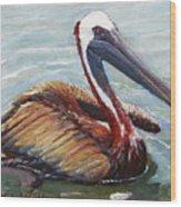 Pelican In The Water Wood Print