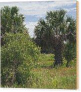 Pelican Island Nwr In Florida Wood Print