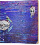 Pelican Mates 2 Wood Print