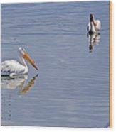 Pelican Mates Wood Print