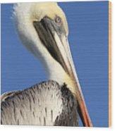 Pelican Mohawk Wood Print