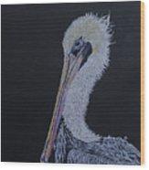 Pelican On Black Wood Print
