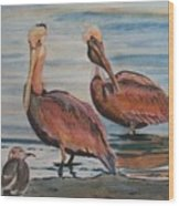 Pelican Party Wood Print