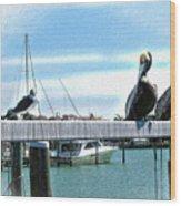 Pelican Perch Wood Print