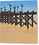 Pelican Pier Near Pass Christian - Mississippi Wood Print