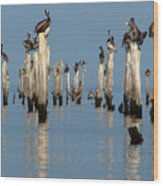 Pelican Pilings Wood Print