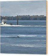 Pelican Porpoise And Fishermen Wood Print