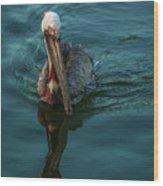 Pelican Reflection Wood Print