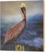 Pelican Seas Wood Print