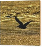 Pelican Silhouette - Golden Gulf Wood Print