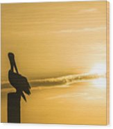 Pelican Silhouette At Sunset Wood Print