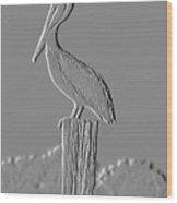 Pelican Stoop Wood Print