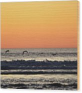 Pelican Sunset Wood Print