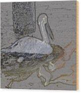 Pelican Swim IIi Color Pencil Wood Print