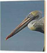 Pelican Upclose Wood Print