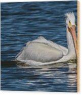 Pelican Wake Wood Print
