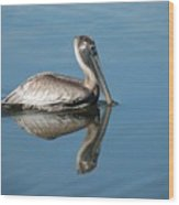 Pelican With Reflection Wood Print