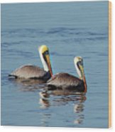 Pelicans 2 Together Wood Print