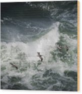 Pelicans And Surf Wood Print