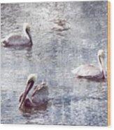 Pelicans At Rest Wood Print