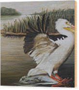 Pelicans At The Confluence Wood Print