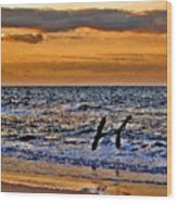 Pelicans Crusing The Coast Wood Print